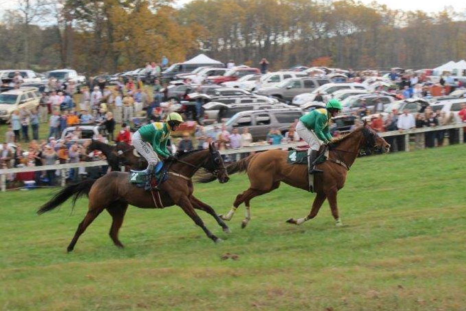 Guesthouses properties near the Foxfield Races in Charlottesville, Virginia