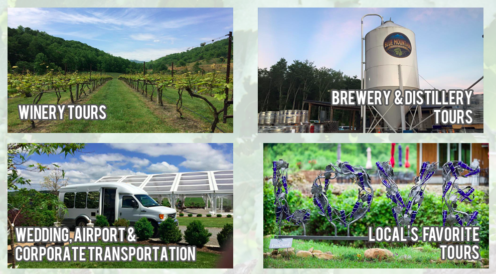Explore Charlottesville area with Central Virginia Wine Tours during your Guesthouses stay