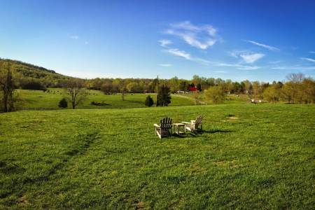 Open fields, green grass, and blue skies at Jefferson Vineyards
