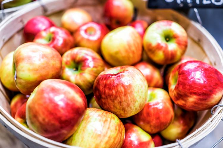 Apples at a cidery